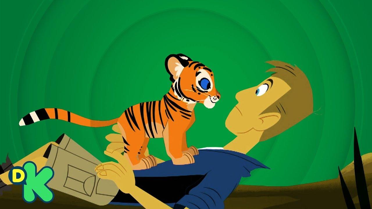 Download El tigre de bengala | Aventuras con los Kratt | Discovery Kids