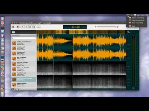 Ocenaudio 2.0.9 audio editor on Ubuntu linux