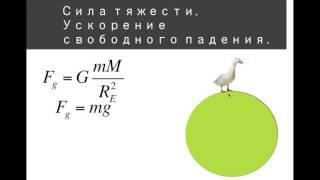 Динамика 6 Силы гравитации