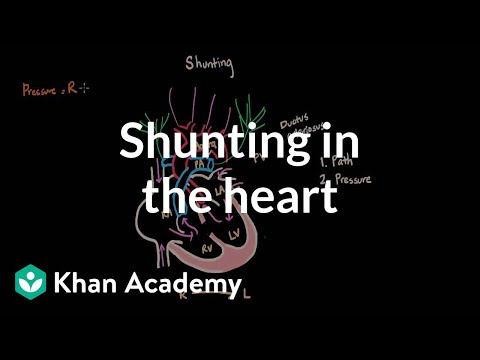 Shunting In The Heart | Circulatory System And Disease | NCLEX-RN | Khan Academy