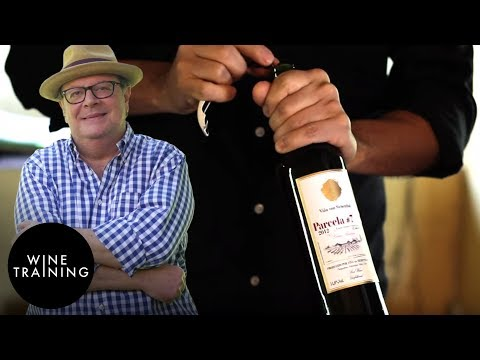 Chilean Wine - Aconcagua Valley | Wine Training School