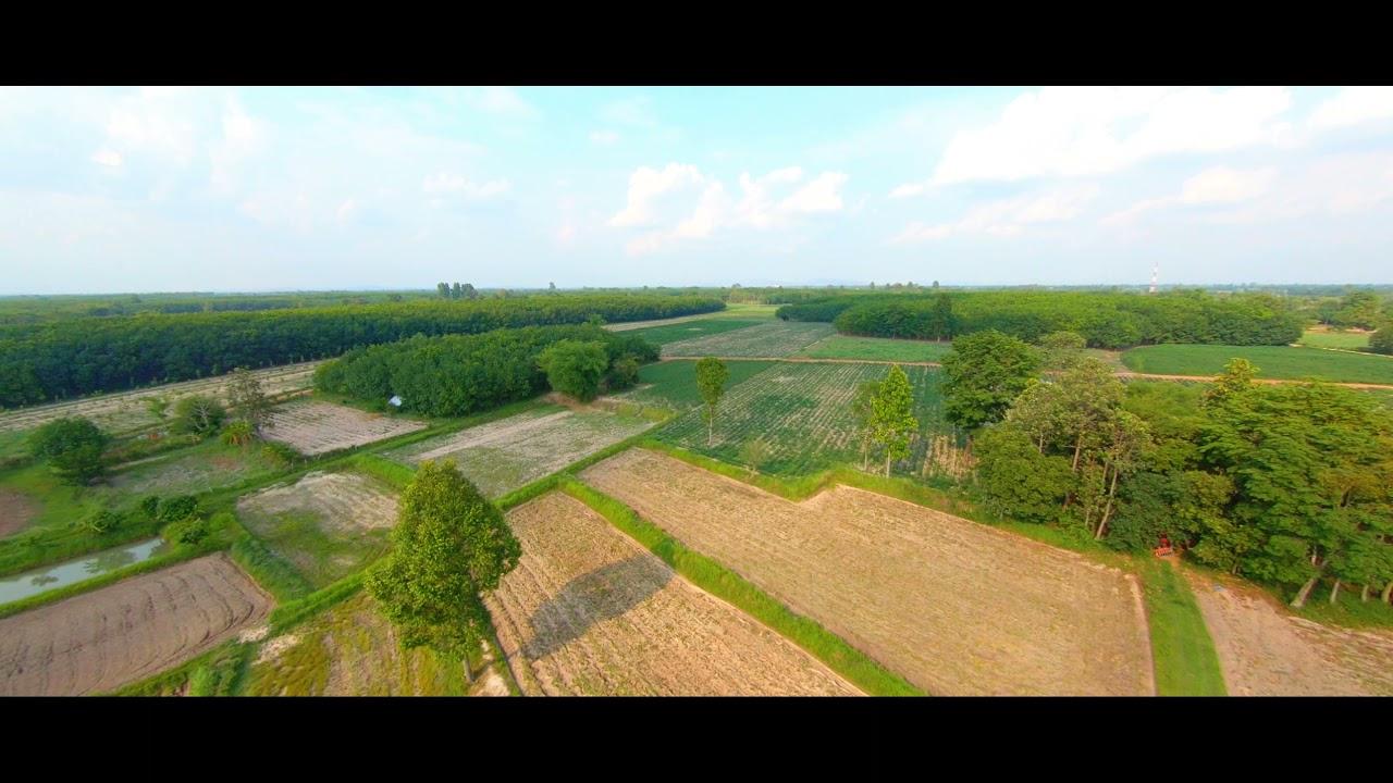 เข้าป่าชมทุ่งนา l cinewhoop l cloud149 PNP l เดอะแฟร้งค์ (GoPro 7 Black) 2K