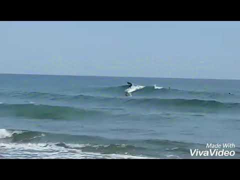 DANUBE SURF ACADEMY