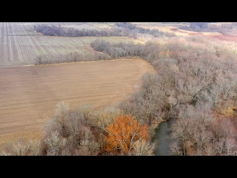 Diverse Recreational 40 Acre Property For Sale In DeWitt County, IL