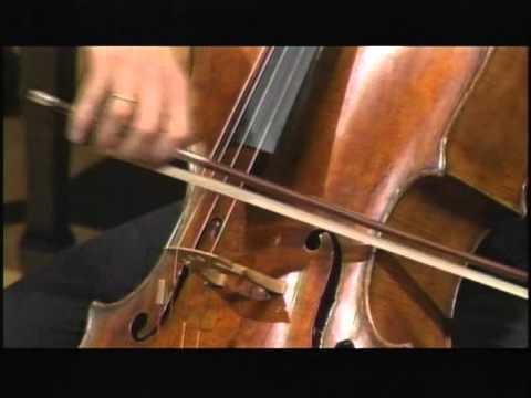 Janacek, Pohadka III Allegro (Queyras)