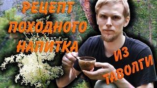 Походный ЧАЙ из ТАВОЛГИ / Spiraea tea
