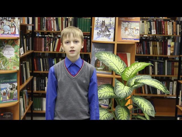 Изображение предпросмотра прочтения – ДмитрийПилипенко читает произведение «Ласточки пропали...» А.А.Фета