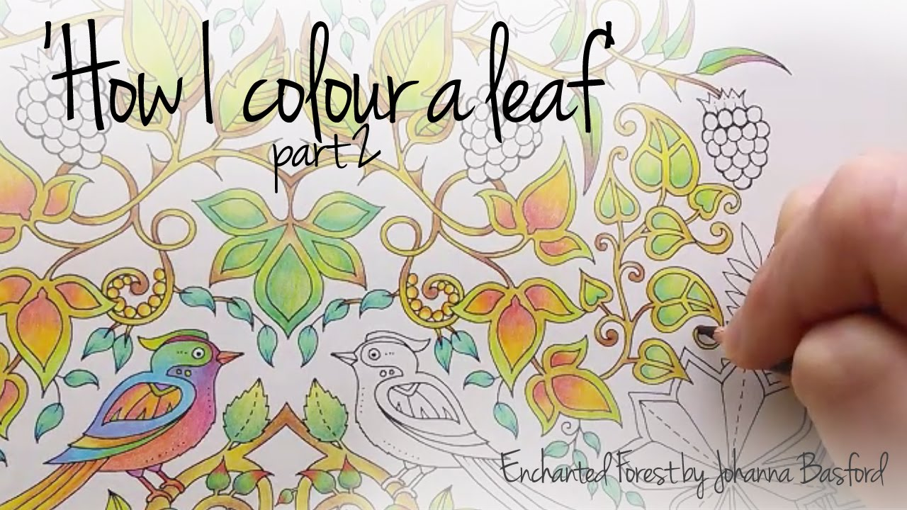 80 Enchanted Forest Coloring Book Mushroom