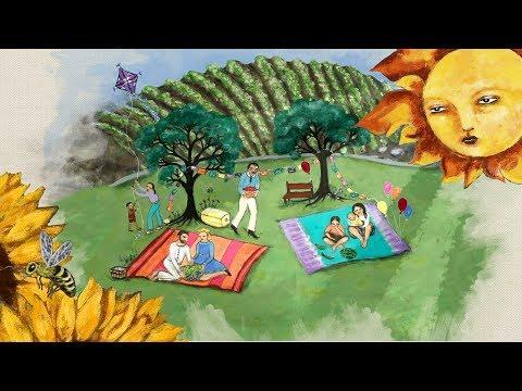 Regenerative Organic Farming the Wilson Produce Way (Hand-Painted Animation)