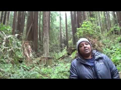 African American Nature & Parks Experience Weekend
