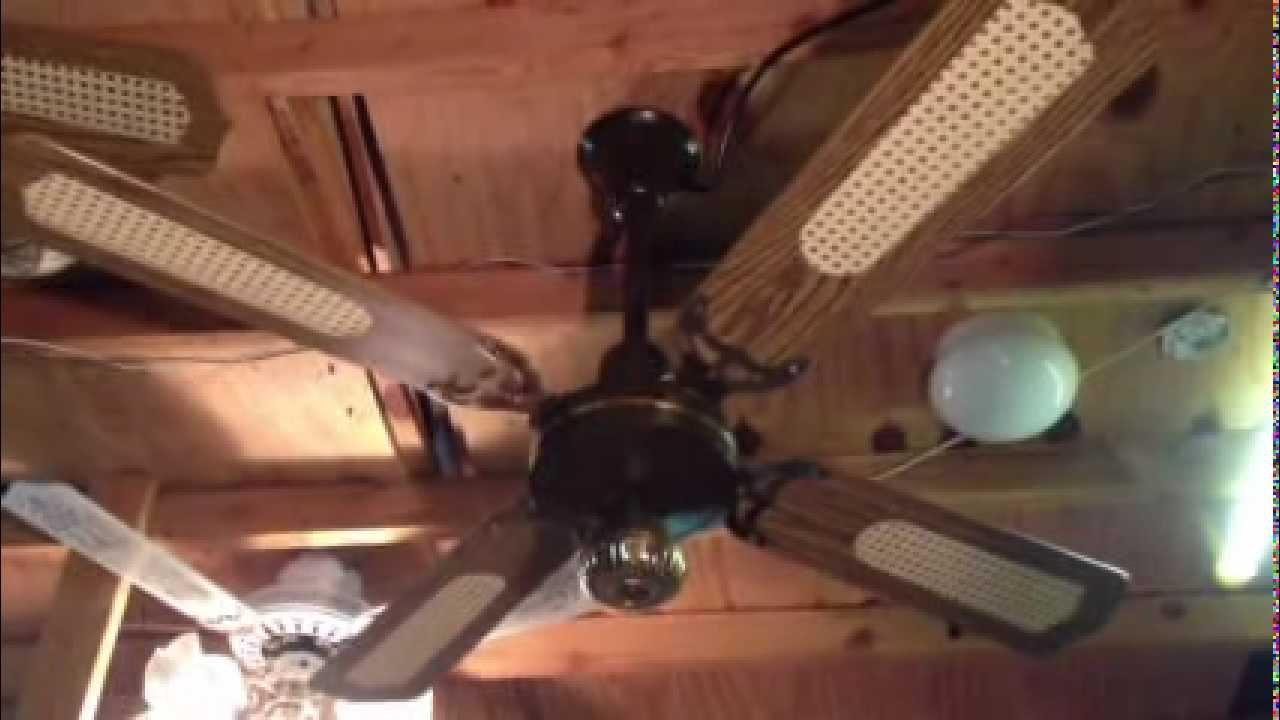 Loyal Spinner Ceiling Fan Youtube