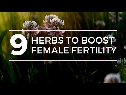 9 HERBS TO BOOST FEMALE FERTILITY