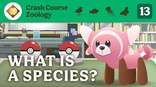 What is a Species? Crash Course Zoology #13