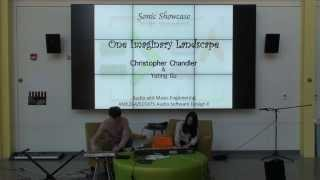 Christopher Chandler: One Imaginary Landscape
