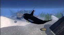 Orca Whale Simulator 3D | Ultimate Ocean Simulator, By Gluten Free Games
