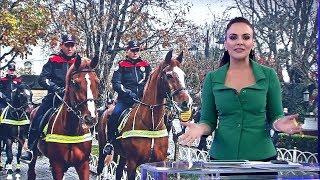Atlı polisler göreve başladı!