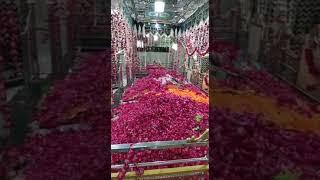 URS-E-NOORI 1441ھ* Live video