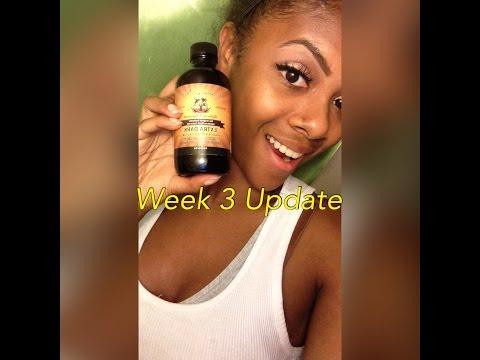 Jamaican Black Castor Oil Week 3 Update