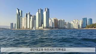 부산 해운대해수욕장 앞바다낚시,광안대교 밑낚시,마린시티…