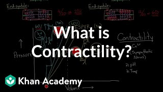 What is contractility? | Circulatory system physiology | NCLEX-RN | Khan Academy
