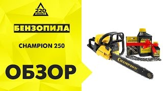 видео Бензопила Champion 250-18
