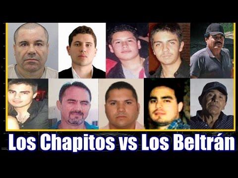 Los Chapitos vs Los Beltrán