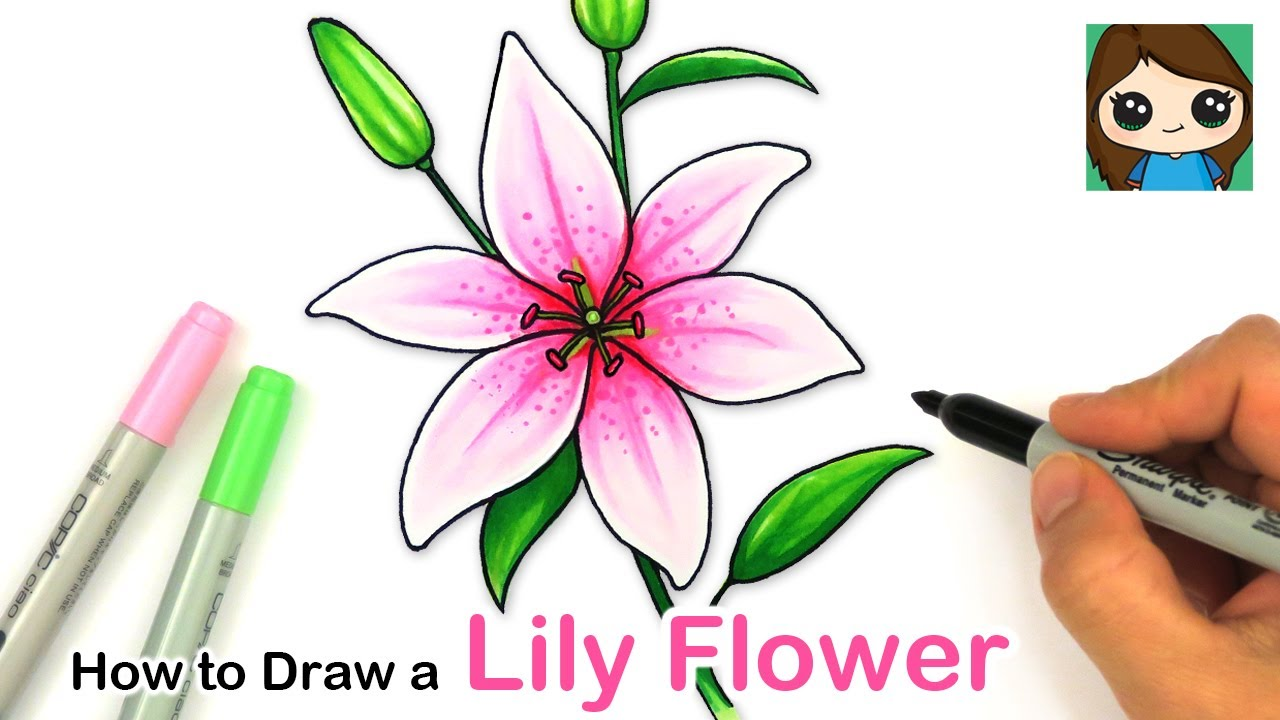 How To Draw A Lily Flower Easy Youtube