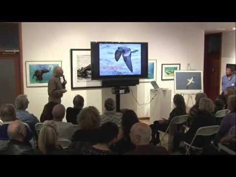 Peter Harrison WAN  Full Video