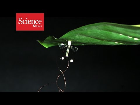 Flying Robots Can Conserve Energy By Perching