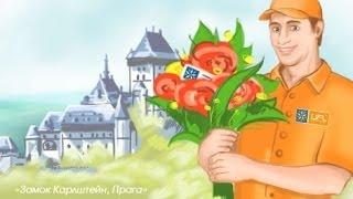 Доставка цветов Прага - SendFlowers.ua. Цветы в Прагу(Заказать доставку цветов в Прагу прямо сейчас: http://world.sendflowers.ua/czech_republic/prague Некоторые факты о доставке цвето..., 2014-01-03T13:35:28.000Z)