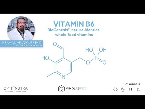 biogenesis™-vitamin-b6-with-dr.-ramon-velazquez,-ph.d.-|-mind-lab-pro®