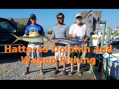 Offshore Fishing for Dolphin and Wahoo in Hatteras