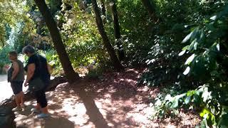 Водопад к в парке лабиринто