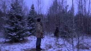 Охота на вальдшнепа зимой