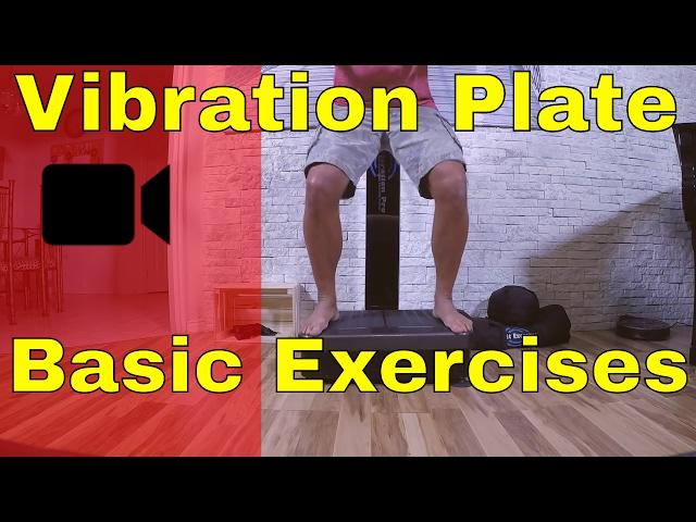 BASIC  (Whole Body) Vibration Machines LEG Workout - Vibration Plate Exercises.