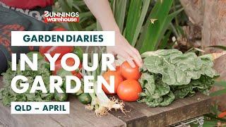 Gardening in April | Queensland | Bunnings Garden Diary