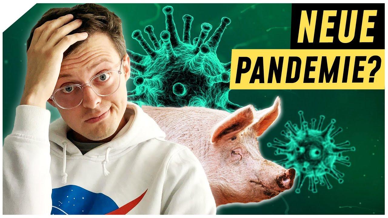 Neue Schweinegrippe! Beginnt das Zeitalter der Pandemien? | Breaking Lab