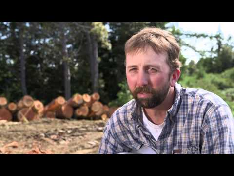 Shell Rotella Unsung - A life in the day of hard work: Logging