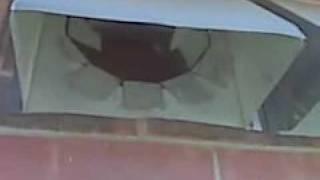 Bird Nest in Exhaust Vent in Plano, Texas (Plano, TX)
