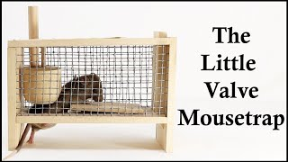 A Complicated Tinker Toy Mousetrap That Works - The Little Valve Mousetrap. Mousetrap Monday.