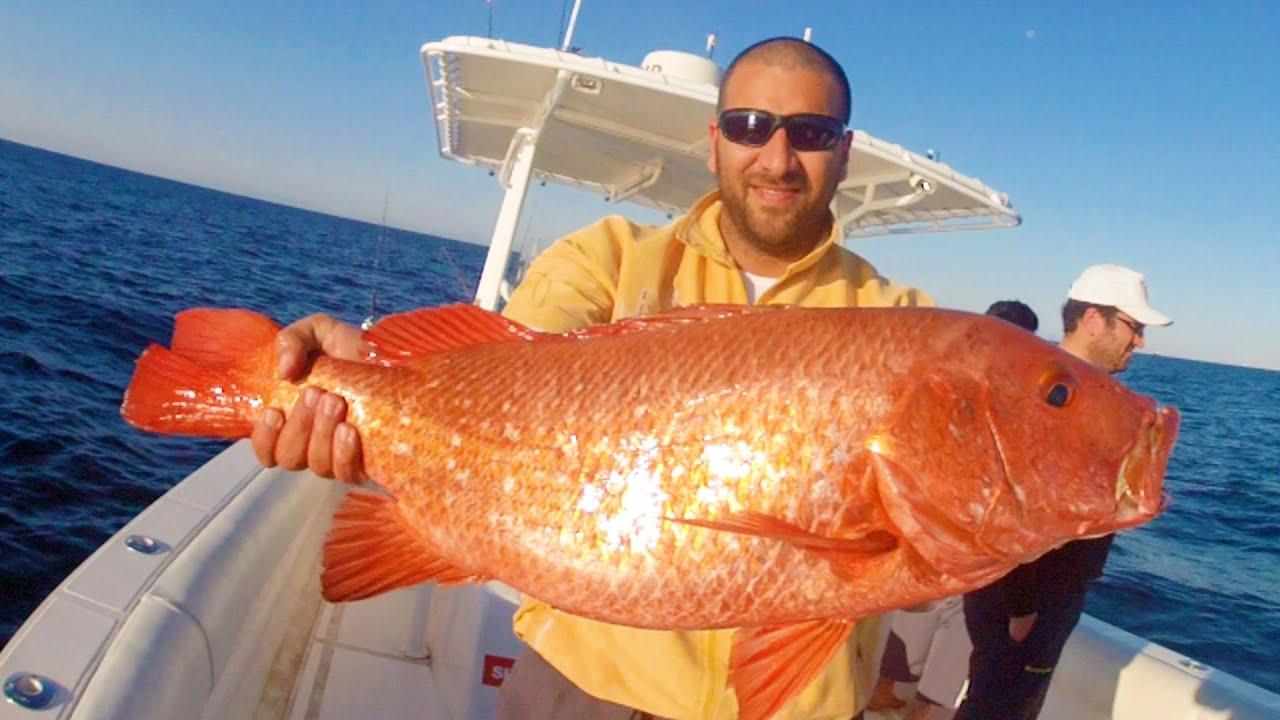 Fujairah fishing youtube for Youtube fishing video