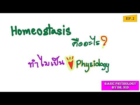 EP.2 Homeostasis ภาวะธำรงดุล และตัวปรับให้สมดุล