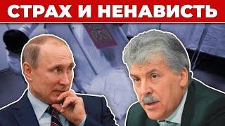 🍓За что Путин на самом деле ненавидит Грудинина