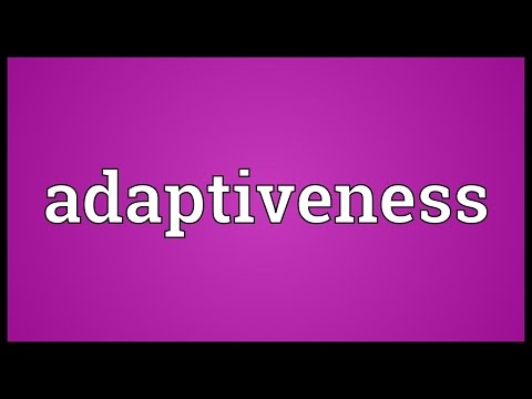 Header of adaptiveness