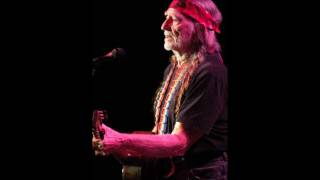 Willie Nelson  -  The Party
