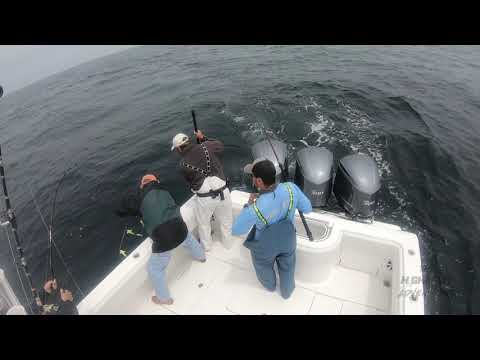 Blue Fin Tuna Fishing ,  Long Island 2019 !