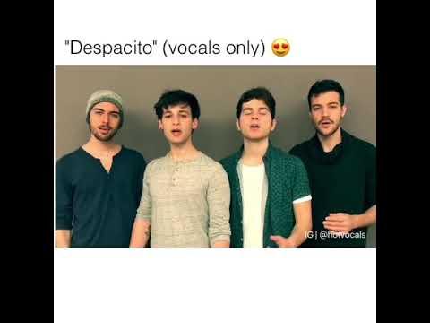 despacito vocals only