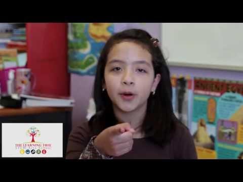 The Learning Tree Stem Arts School GoFundMe Video