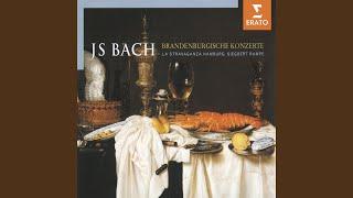 Tripelkonzert a-moll BWV 1044: II. Adagio ma non tanto e dolce