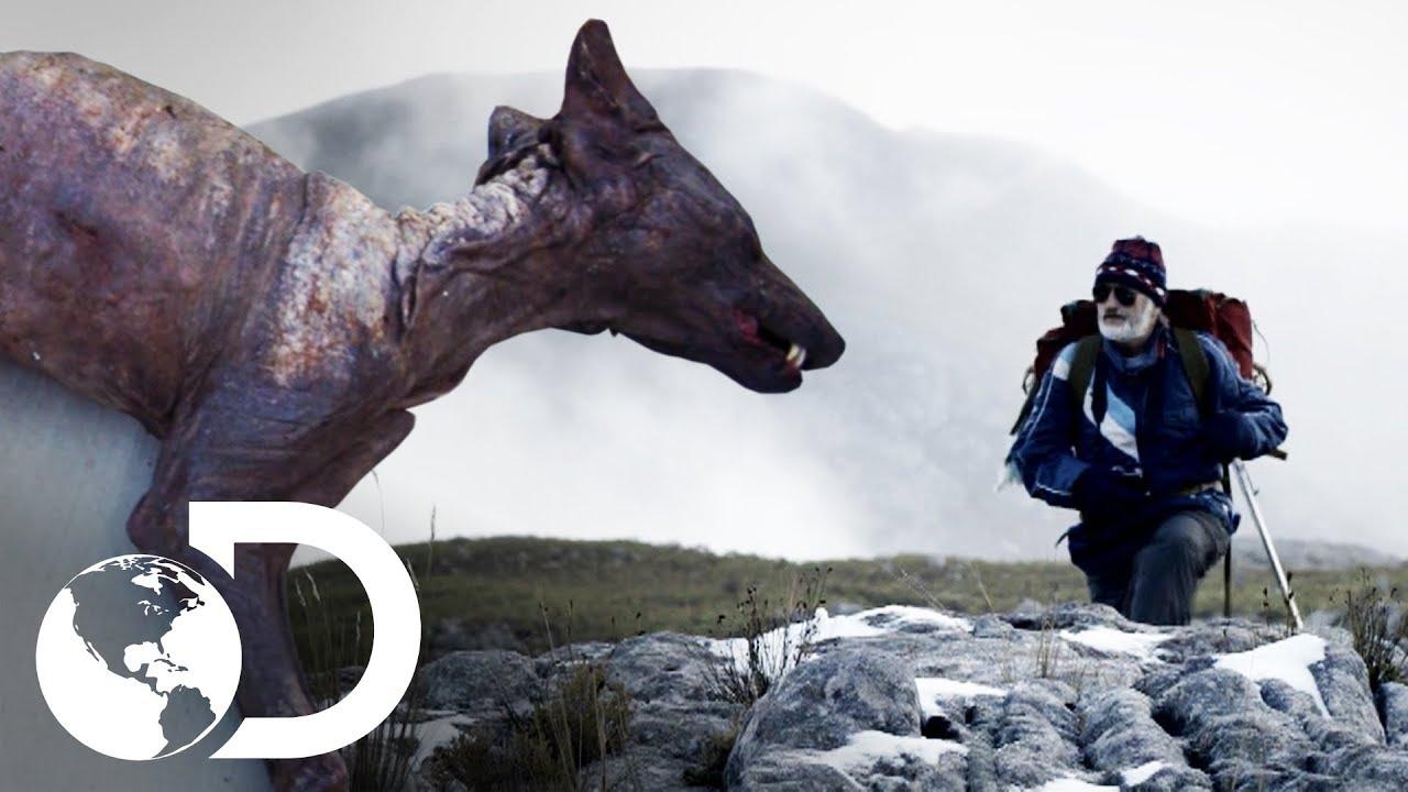 Mistérios no planeta Terra | Histórias Inacreditáveis | Discovery Brasil